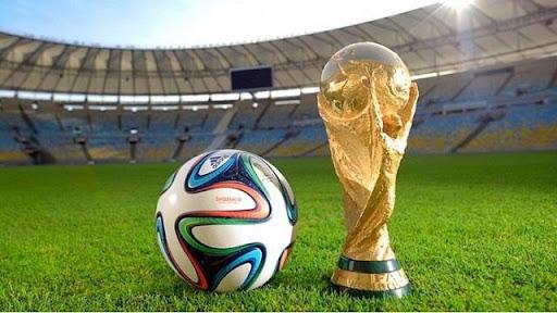 World Cup mấy năm tổ chức 1 lần?