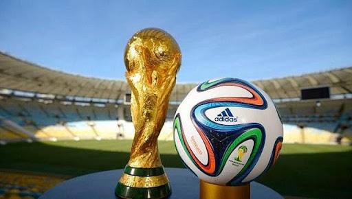 Chờ đón mùa giải 2022 với nhiều hứng khởi